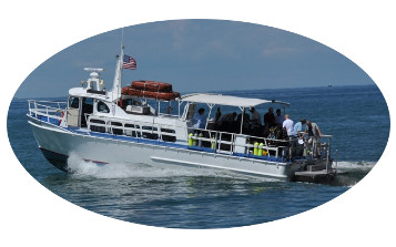 Welcome To Osprey Charters